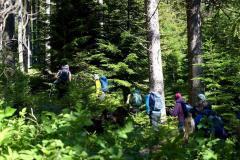 tn_gruppo-bosco