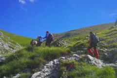 tn_gruppo-cresta-montagna