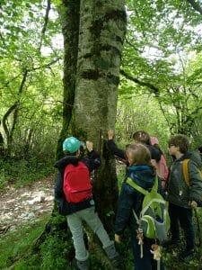 Educazione ambientale programma scolastico