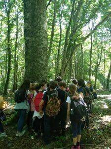 Educazione ambientale scuola